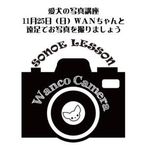 わんちゃんの遠足会【カメラ講習会】のお知らせ