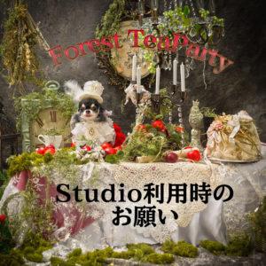 1月12日13日撮影会【スタジオ利用時のお願い】